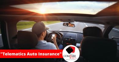 Telematics Auto Insurance