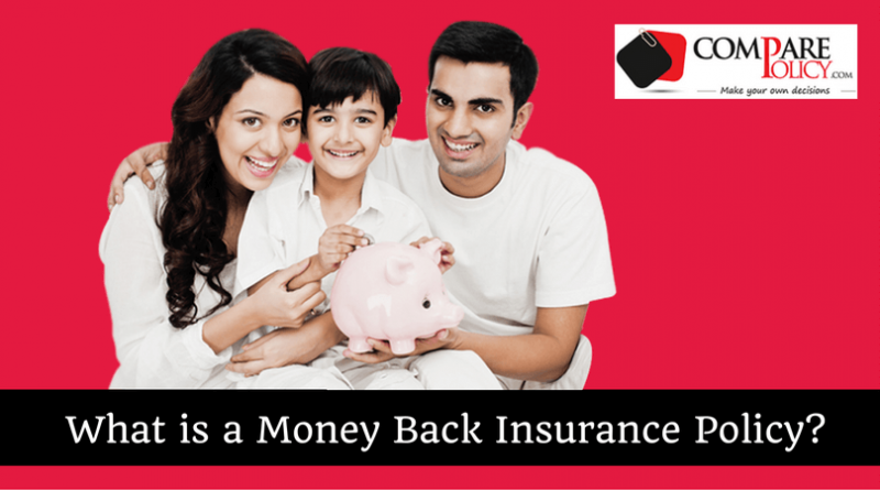 Money Back Insurance Policy