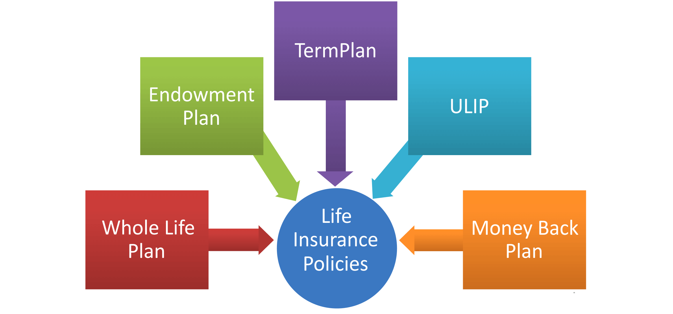 type-of-life insurance-policy - Comparepolicy.com